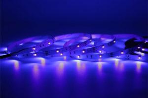 UV LED Tape Light
